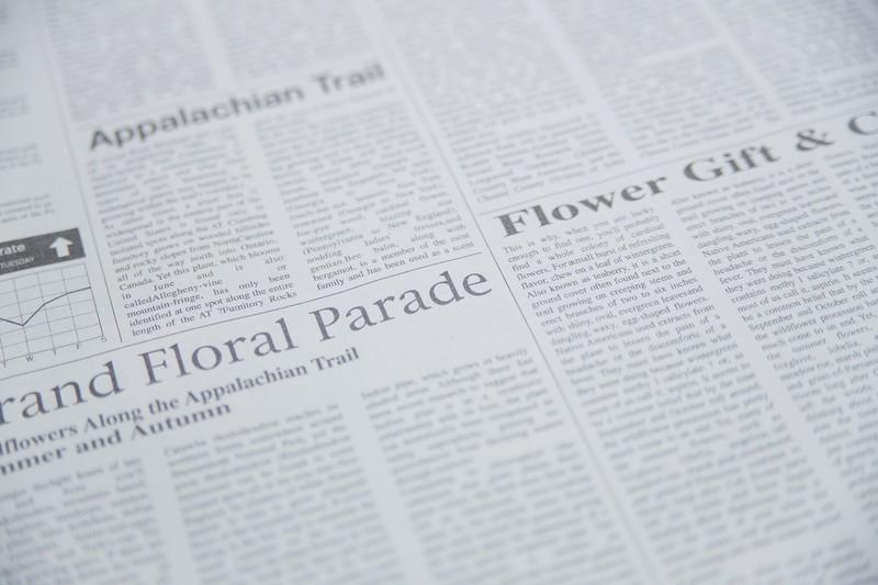 サービス|新聞広告イメージ